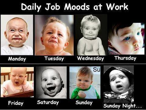 Daily Job Moods at Work Funny Image