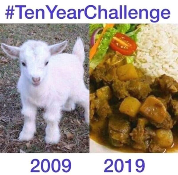 Goat 2 Chicken 10 Year Challenge funny meme