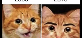 9 Funny 10 Year Challenge Images 10YearChallenge Memes