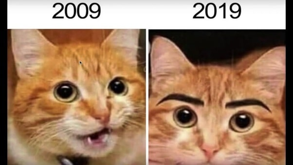 cat eye lashes 10 Year challenge Funny